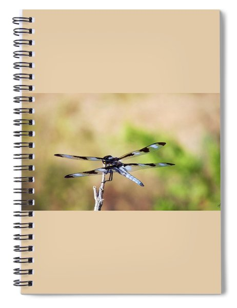 Rest Area, Dragonfly On A Branch Spiral Notebook