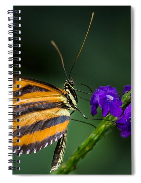 Resting Beauty Spiral Notebook by Garvin Hunter