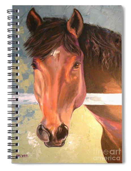 Reverie - Quarter Horse Spiral Notebook