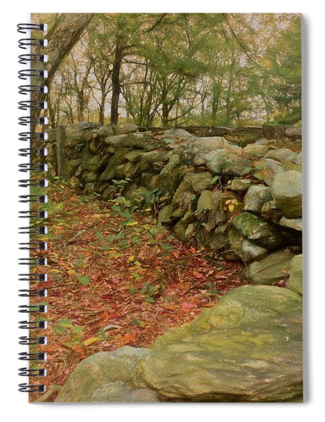 Reverie With Stone Spiral Notebook