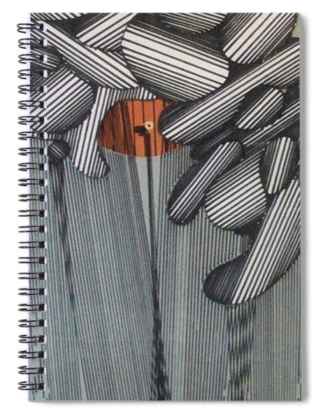 Rfb0100 Spiral Notebook