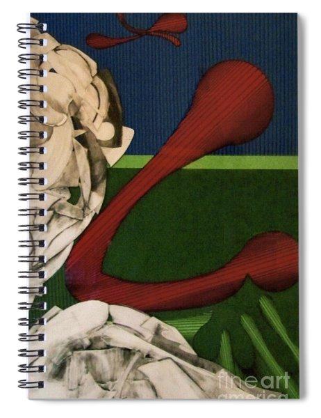 Rfb0108 Spiral Notebook