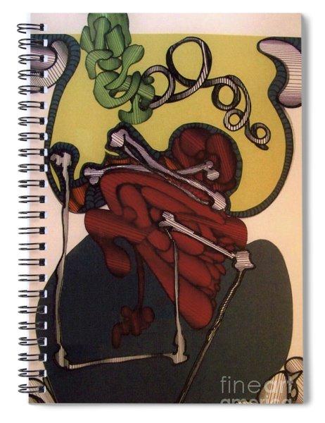 Rfb0113 Spiral Notebook