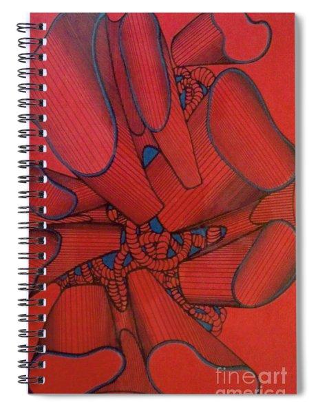 Rfb0117 Spiral Notebook