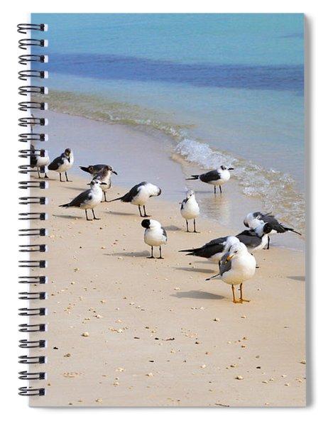 Rhapsody In Seabird Spiral Notebook