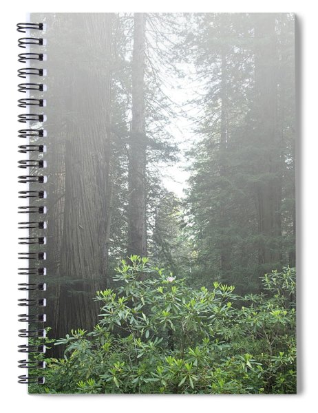 Rhododendrons In The Fog Spiral Notebook