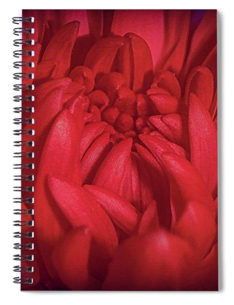 Richly Red Spiral Notebook
