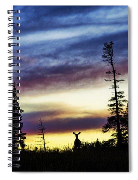 Ridge Sihouette Spiral Notebook