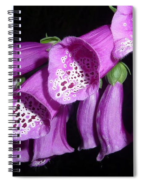 Ring My Bell With Joy Spiral Notebook