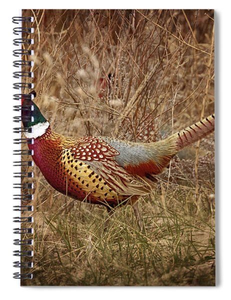 Ring Necked Pheasant Spiral Notebook