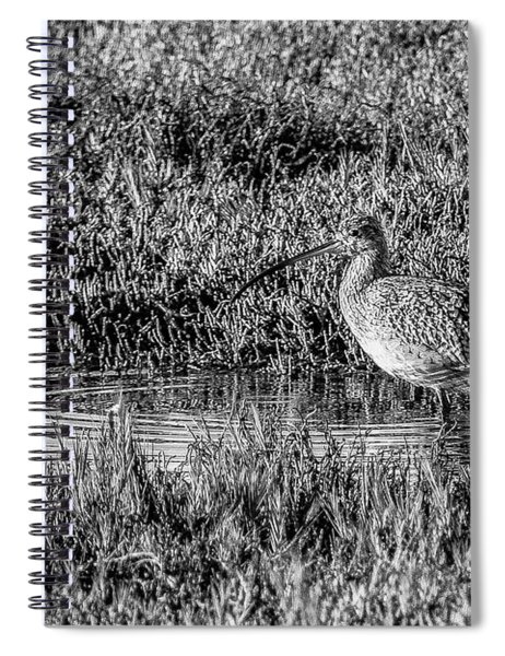 Camouflage, Black And White Spiral Notebook