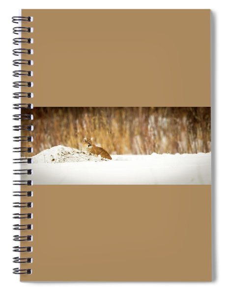 Rivers Treasure  Spiral Notebook