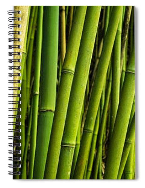 Road To Hana Bamboo Panorama - Maui Hawaii Spiral Notebook