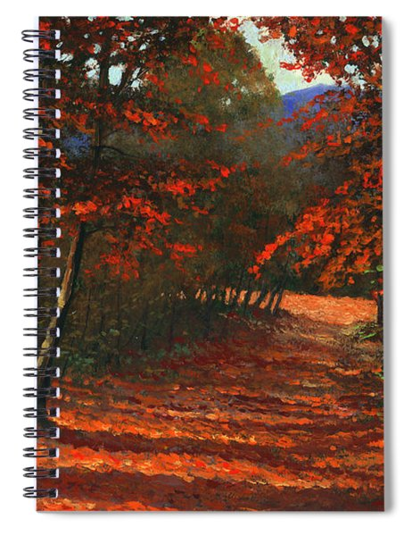 Road To The Clearing Spiral Notebook