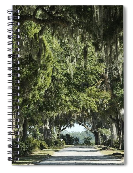 Road With Live Oaks Spiral Notebook