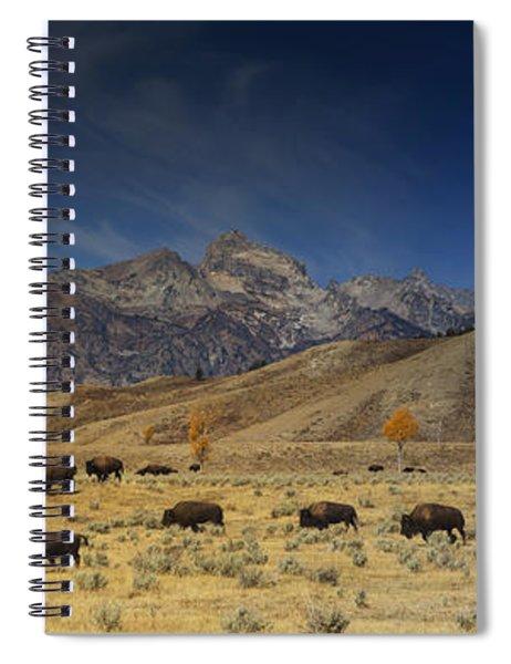 Roaming Bison Spiral Notebook