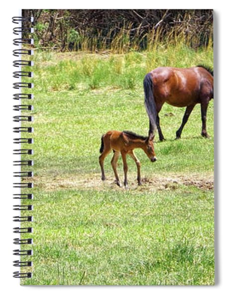 Roaming Freely Spiral Notebook