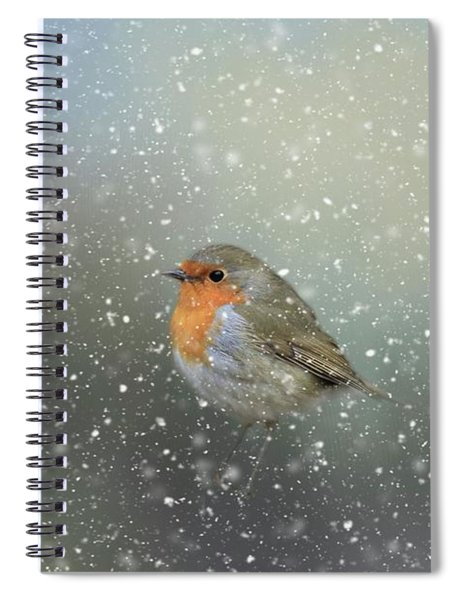 Robin In Winter Spiral Notebook