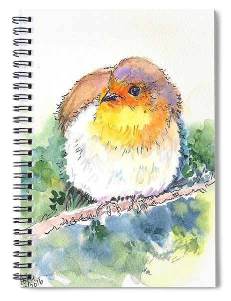 Robin On The Branch Spiral Notebook