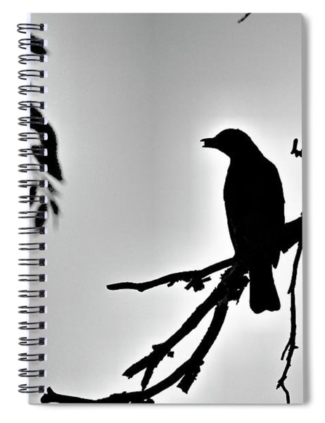 Robin Silhouettes Spiral Notebook