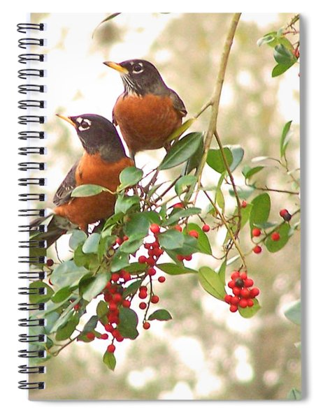 Robins In Holly Spiral Notebook