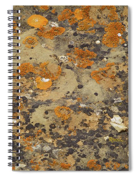 Rock Pattern Spiral Notebook