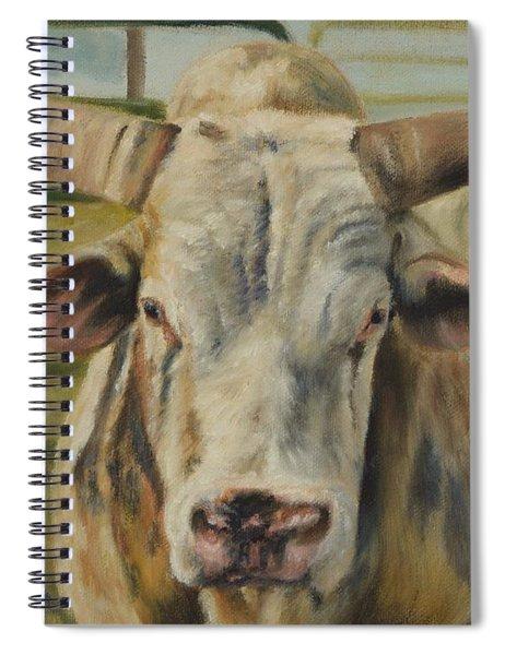 Rodeo Bull 2 Spiral Notebook
