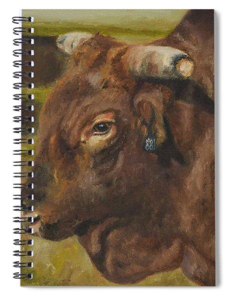 Rodeo Bull 3 Spiral Notebook