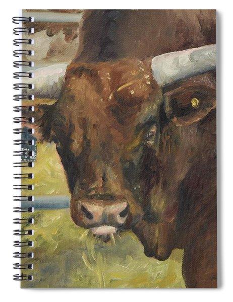 Rodeo Bull 5 Spiral Notebook