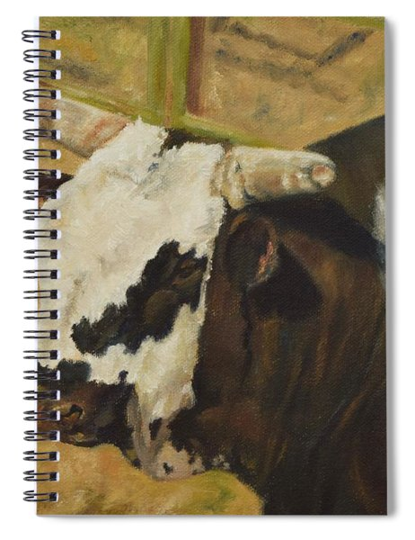 Rodeo Bull 6 Spiral Notebook