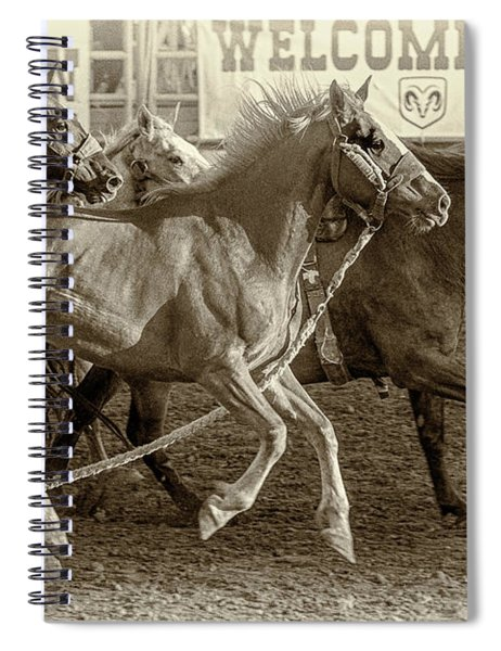 Rodeo Horses - Antique Sepia Spiral Notebook