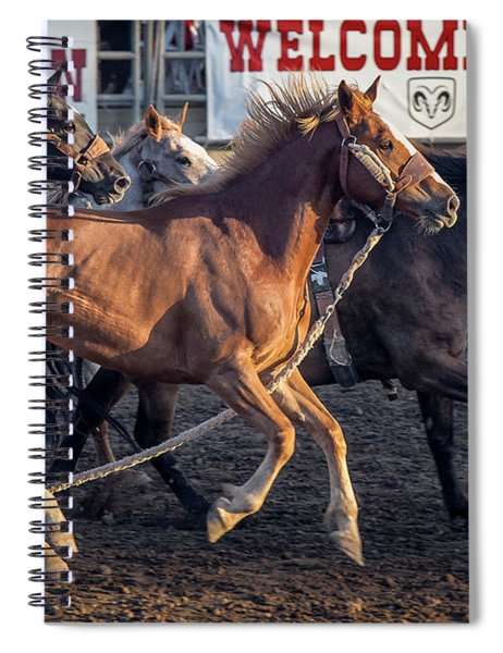 Rodeo Horses Spiral Notebook