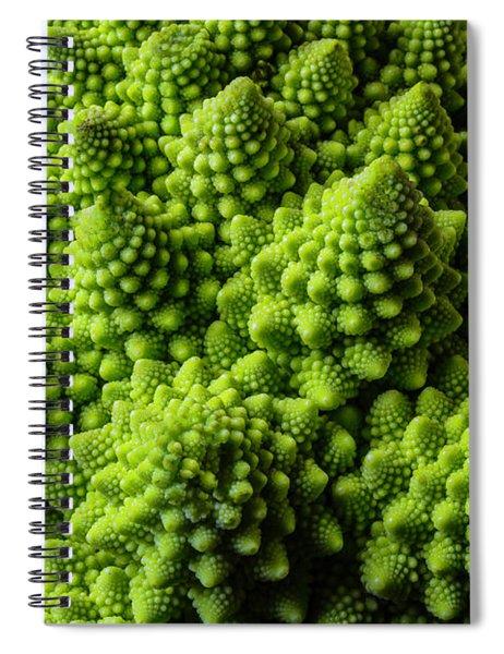 Romanesco Broccoli Spiral Notebook