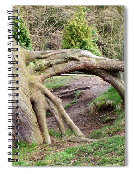 Roots Of Strength Spiral Notebook