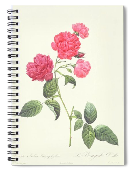Rosa Indica Caryophyllea Spiral Notebook
