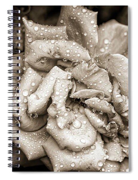 Rose After The Rain Spiral Notebook