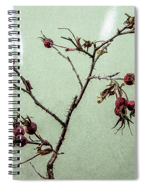 Rose Hips Spiral Notebook