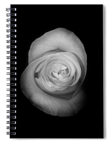 Rose From The Shadows Spiral Notebook