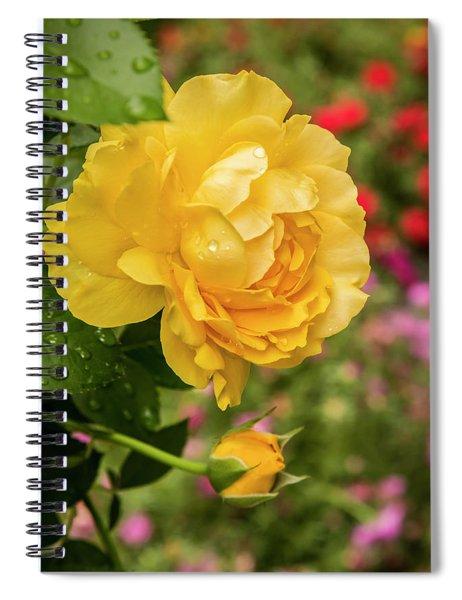 Rose, Julia Child Spiral Notebook