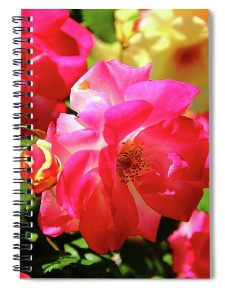 Rose Medley Spiral Notebook