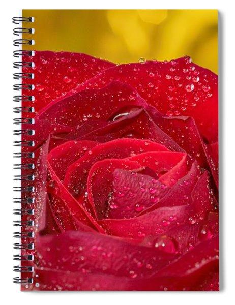 Rose N Gold Spiral Notebook