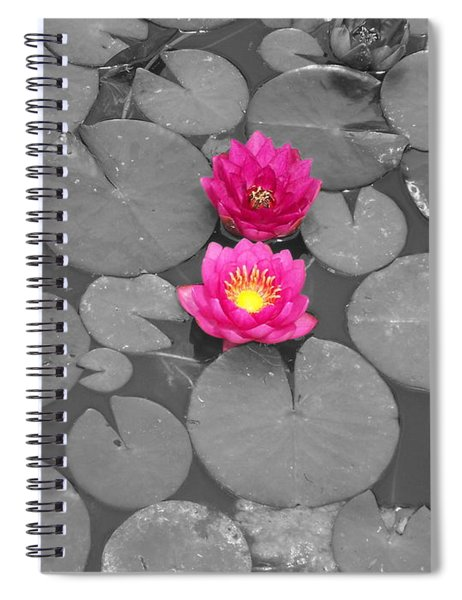 Rose Of The Water Spiral Notebook