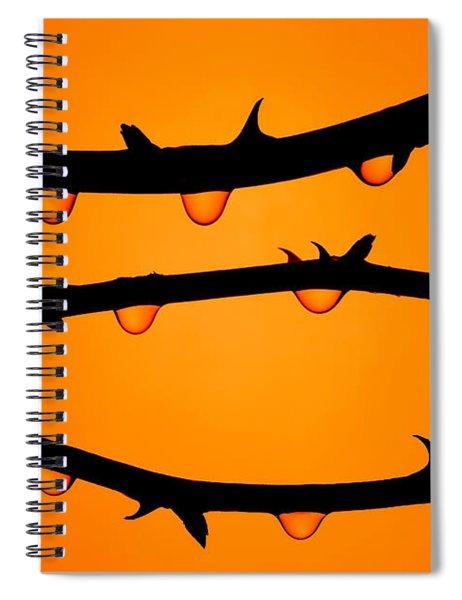 Rosebush Silhouette Spiral Notebook