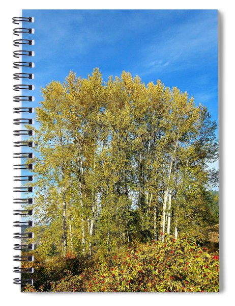 Rosehips And Cottonwoods Spiral Notebook