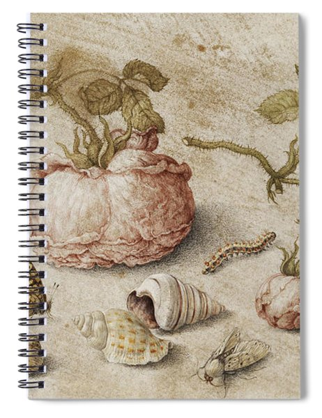 Roses, Butterflies And Shells Spiral Notebook