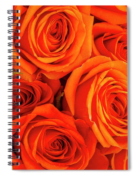 Roses In Orange Spiral Notebook