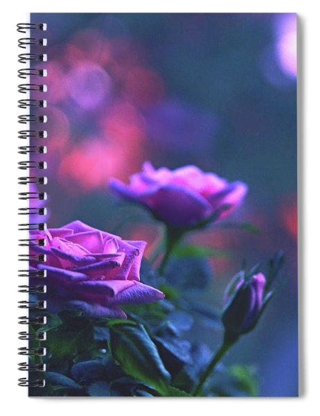 Roses With Evening Tint Spiral Notebook