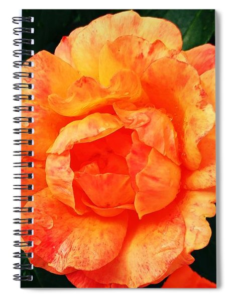 Rosy Glory Spiral Notebook