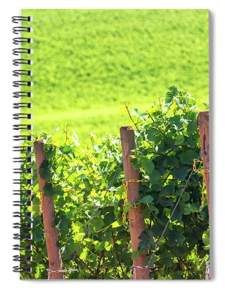 Rows Of Grapes Spiral Notebook