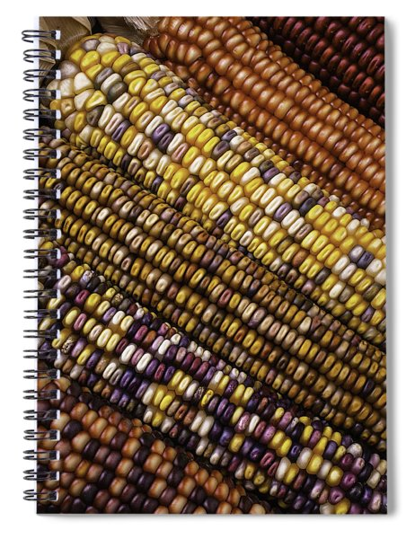 Rows Of Indian Corn Spiral Notebook